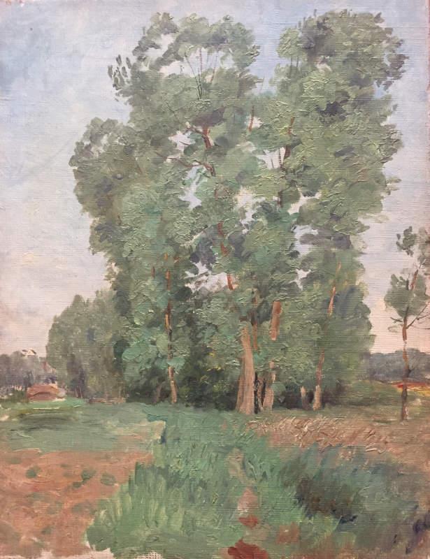 Les grands arbres